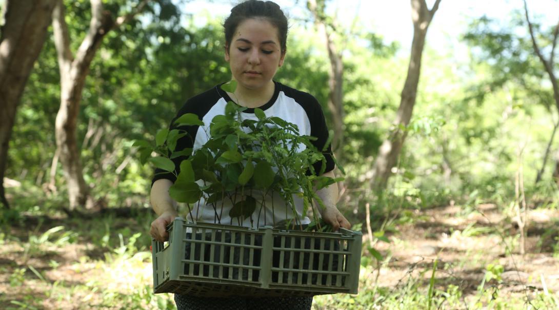 Une volontaire en mission de groupe aide à planter des espèces végétales dans un jardin communautaire.